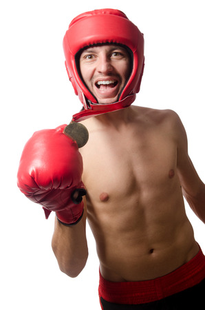irate: Funny boxer isolated on the white Stock Photo