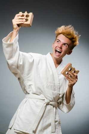 clay brick: Funny karate fighter with clay brick