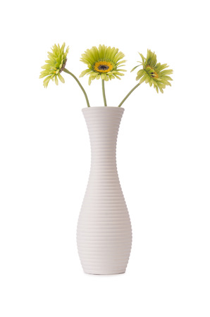 Gerbera flowers isolated on the white background photo