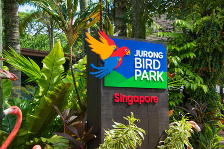 bird of prey: Singapore - AUGUST 3, 2014: Entrance to Jurong Bird Park on August 3 in Singapore, Singapore. Jurong Bird Park is a popular tourist attraction in Singapore