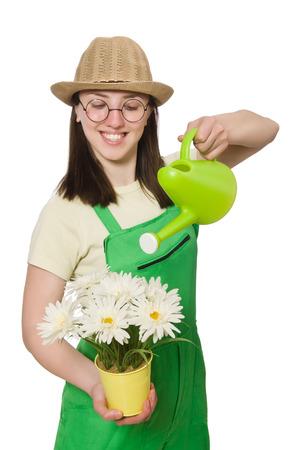 regar las plantas: Chica regando las plantas en blanco