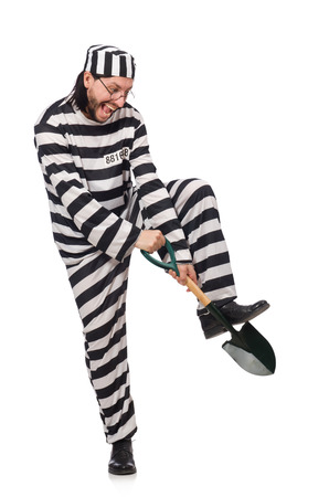 an inmate: Prison inmate with spade isolated on white Stock Photo