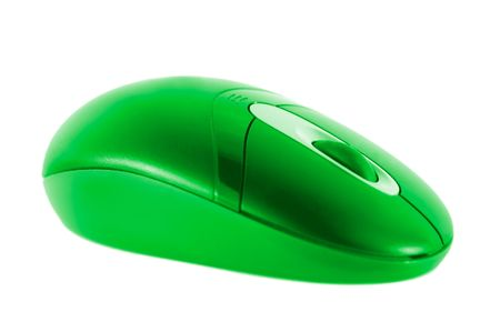 bright colored mouse photo