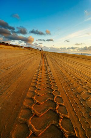 Tracks on the beach photo