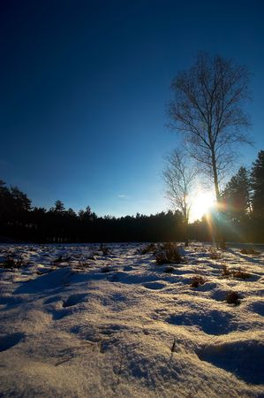 beautiful winter landscape Stock Photo - 452203