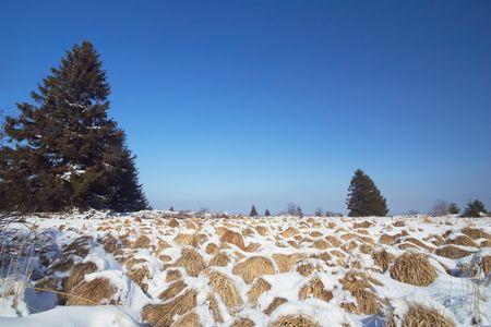 beautiful winter landscape Stock Photo - 475344