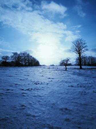snowlandscape: Beautiful winter landscape
