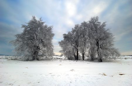 beautiful winter landscape Stock Photo - 475326