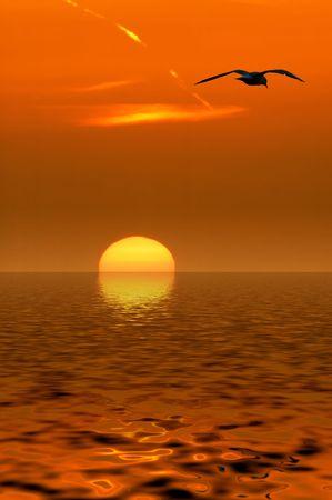 Sunset background Stock Photo - 488777