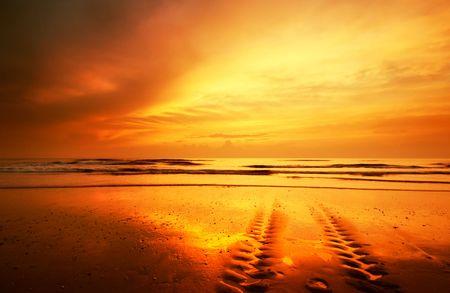 beautiful sunset on the beach Stock Photo - 503238