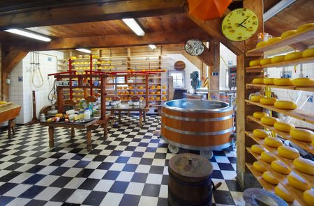 dutch culture: traditional cheese farm in the netherlands taken with a wide angle lens