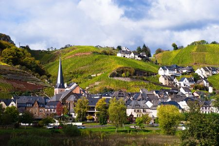 small village, vineyards and forest along the mosel river in germany Stock Photo - 2033519