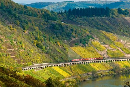 vineyards and forest along the mose riverl in germany with a train passing through Stock Photo - 2033518