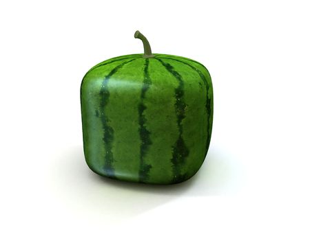 melons: square melon