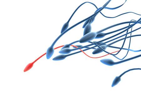 reproductive technology: esperma y �vulo  Foto de archivo