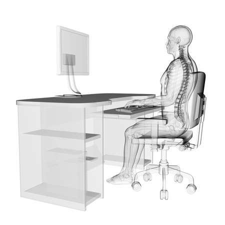skeleton: 3d rendered medical illustration - correct sitting posture