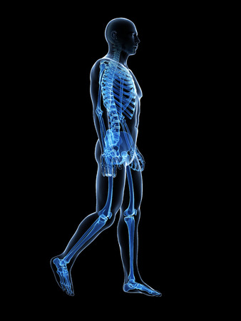 x ray: 3d rendered medical illustration - walking guy Stock Photo