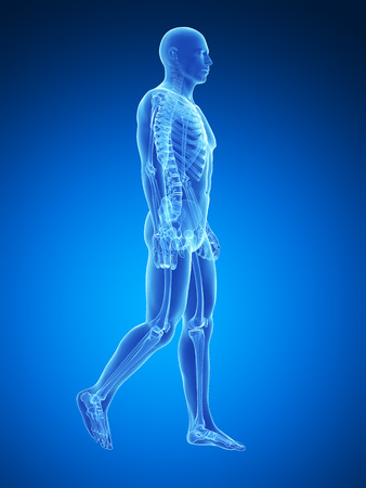 physical therapy: 3d rendered medical illustration - walking guy Stock Photo