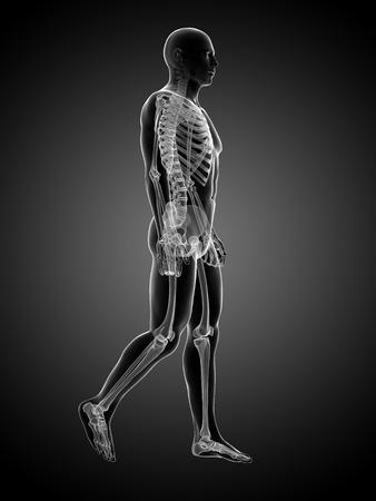 endurance run: 3d rendered medical illustration - walking guy Stock Photo