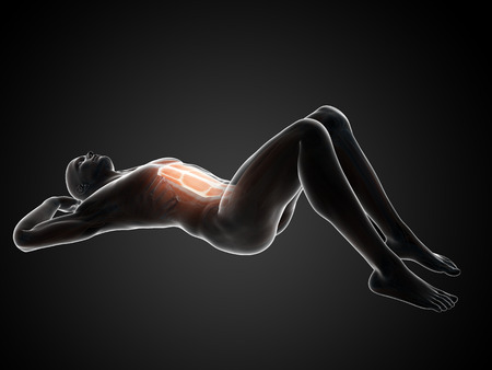 3d rendered illustration of a man doing sit-ups Stock Photo