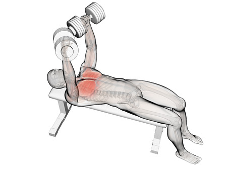3d rendered illustration of a bench press workout Stock Photo
