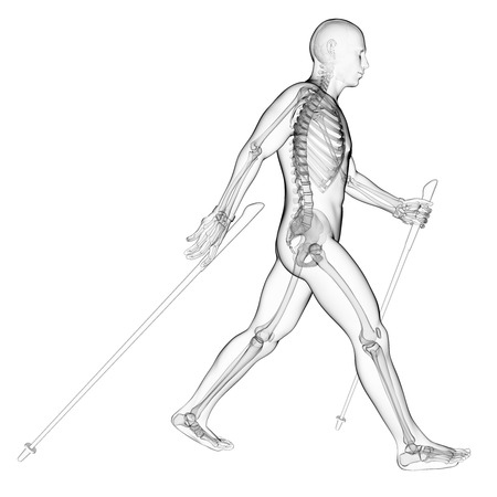 trail running: 3d rendered illustration of a nordic walker Stock Photo