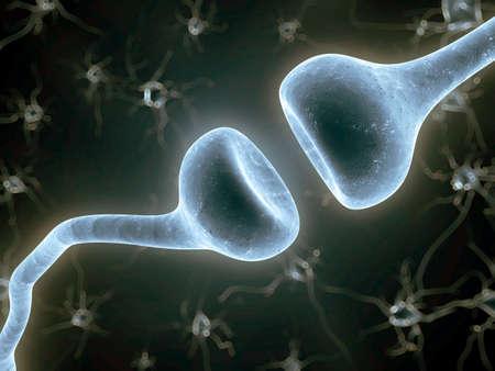encephalon: 3d rendered illustration of a nerve receptor
