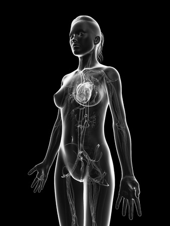 grey, transparent heart of a female