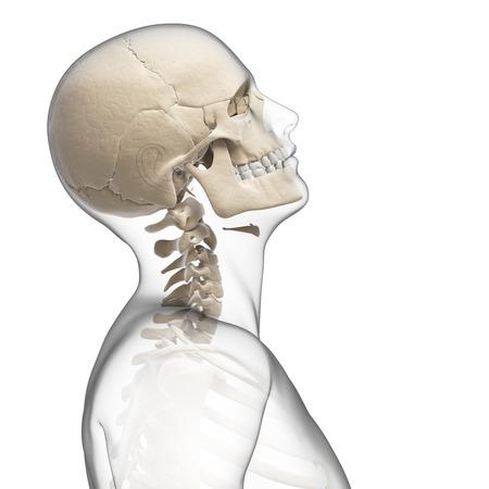 guy bending his neck photo