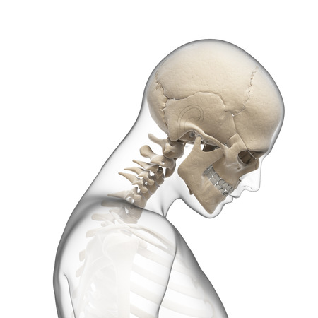 human bones: guy bending his neck Stock Photo