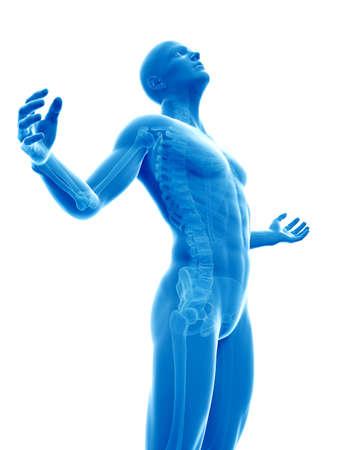 human bones: male posing - visible skeleton Stock Photo