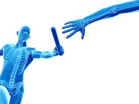 relay: relay - visible skeleton Stock Photo