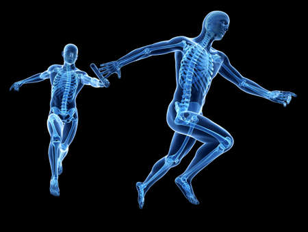body structure: relay - visible skeleton Stock Photo
