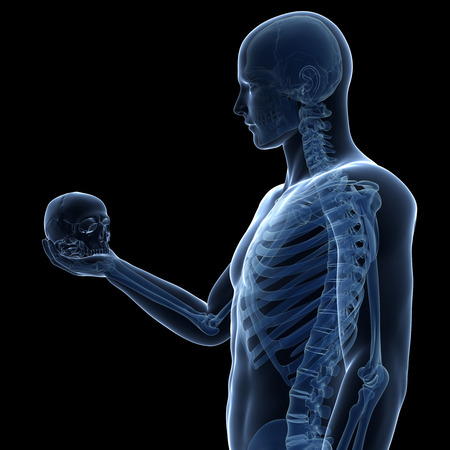 hamlet: guy holding skull - visible skeleton Stock Photo