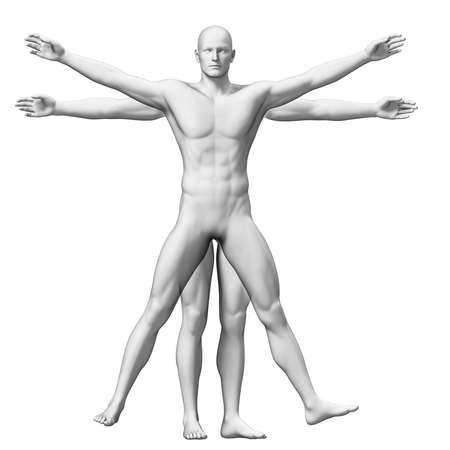 uomo vitruviano: Uomo Vitruviano Archivio Fotografico