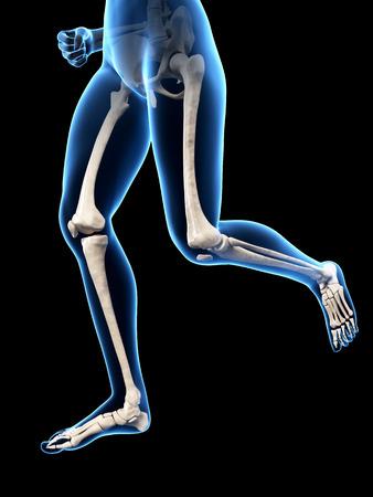 sternum: jogging woman with visible leg bones