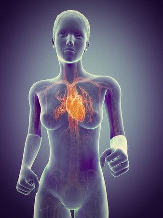 vaisseaux sanguins: le jogging femme avec des vaisseaux sanguins visibles Banque d'images