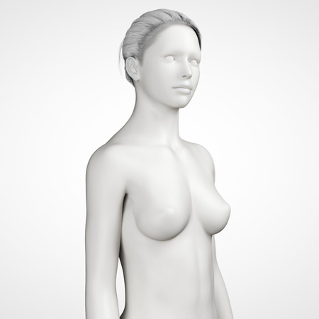 grey female - upper body photo