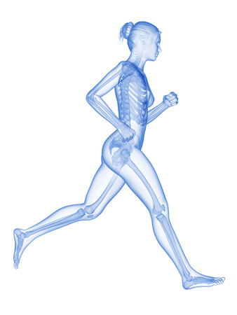 jogger: medical 3d illustration - female jogger with visible bones Stock Photo