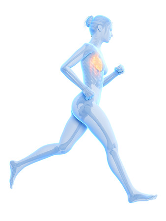 jogger: medical 3d illustration - female jogger with visible heart