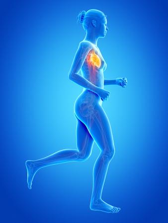 vaisseaux sanguins: le jogging femme avec les vaisseaux sanguins visibles