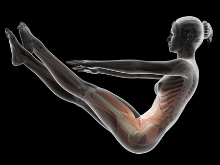 working out: woman working out - muscle anatomy Stock Photo