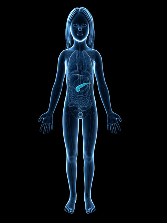 pancreatitis: anatomy of a young girl - the pancreas