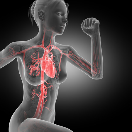 atrium: illustration of a running woman - visible heart