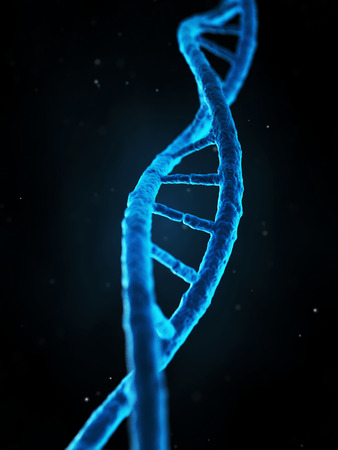 researchs: medical illustration of the human genes