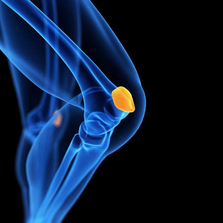 patella: medical 3d illustration of the patella Stock Photo