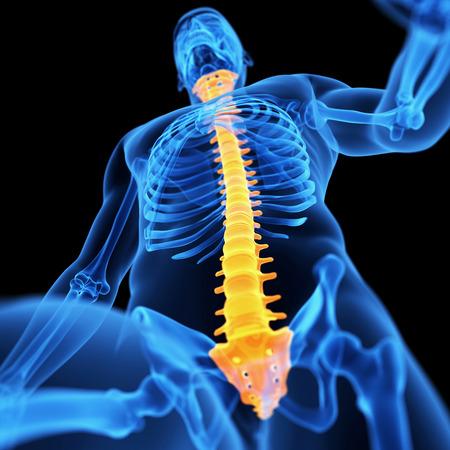 discs: medical 3d illustration of the spine