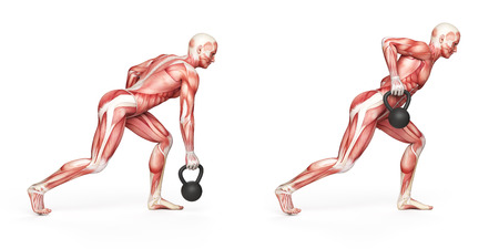 human bones: kettlebell exercise - one arm row Stock Photo