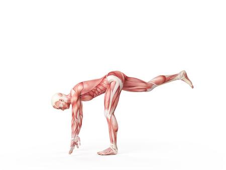 legs: exercise illustration - one leg drop