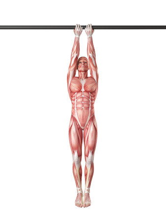 grip: exercise illustration - close grip chin up Stock Photo